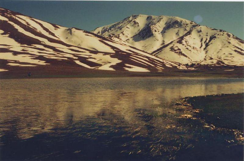 toubkaloukamidmarch2006.jpg