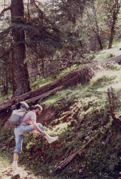37yvesbivilleendmay1984kerrouchenforest.jpg